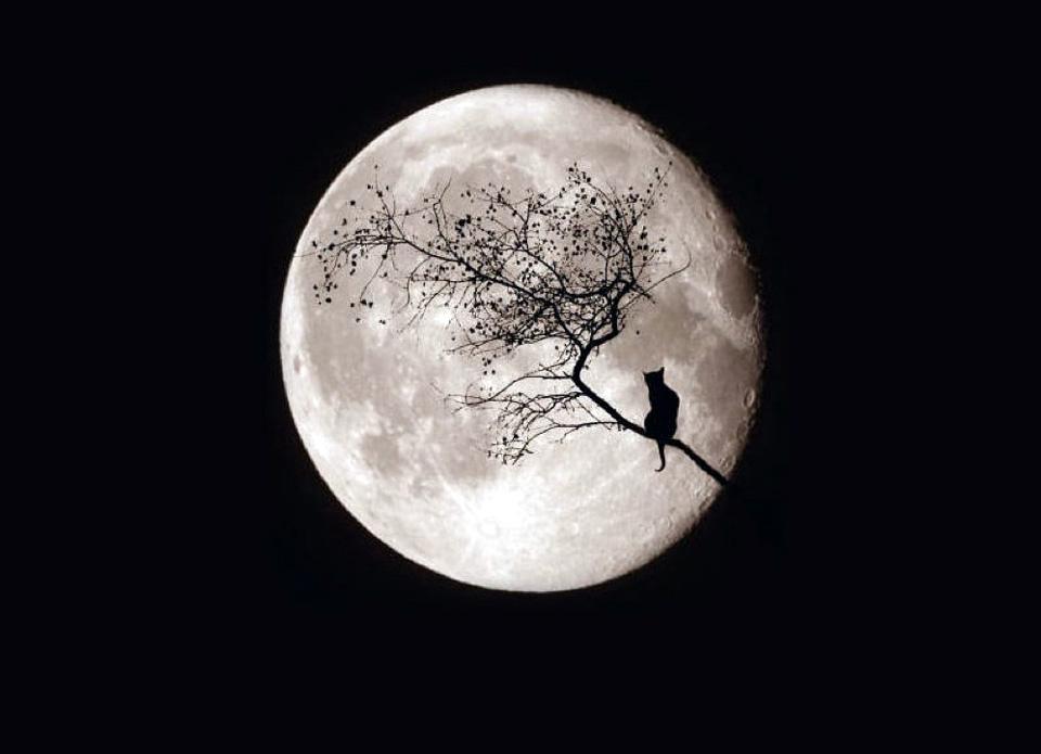 calendario lunar septiembre