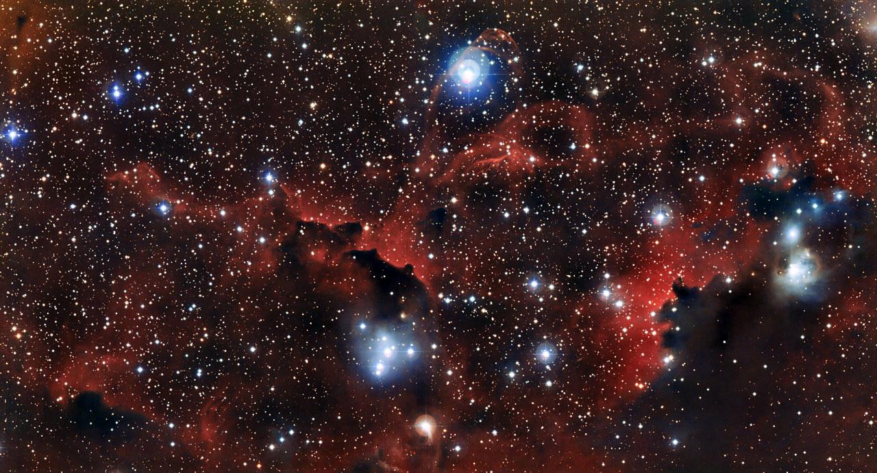 nebulosa-de-la-gaviota
