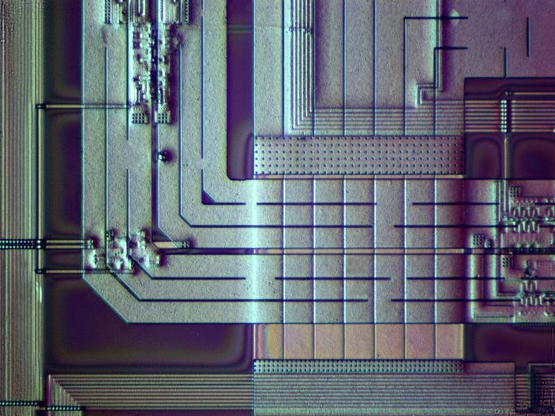 Imagen parcial de tarjeta de video a 100x