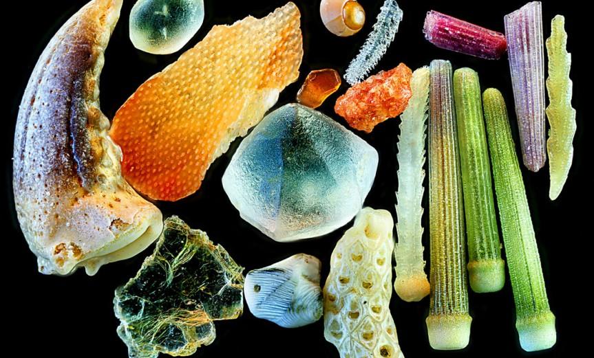 granos-de-arena-microscopio