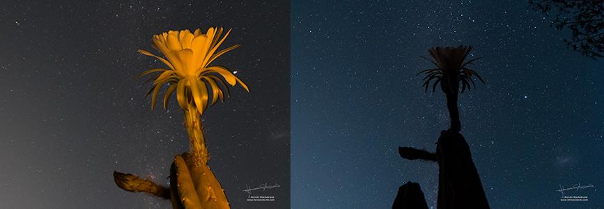 paso-astrofotografia-3
