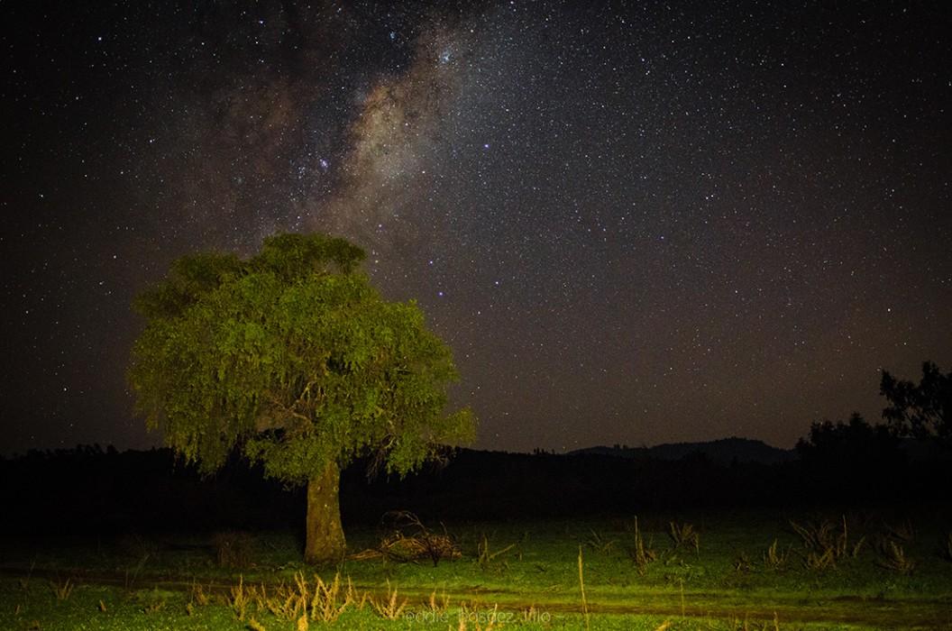 Paisaje y Vía Láctea