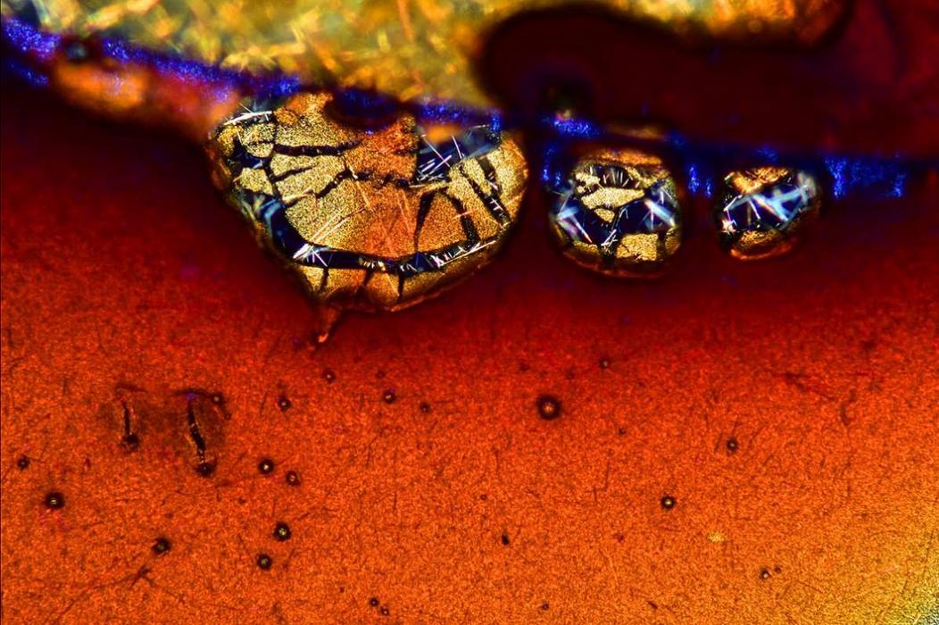 Cristales de café expreso (luz polarizada).