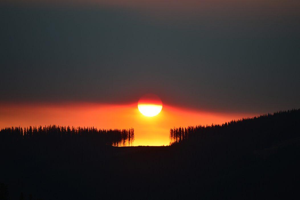 """""""Luz y oscuridad"""" Mención Honrosa Autor: Juan Carlos Carreño. Curepto. """"El Sol antes de la puesta, saliendo tras una densa capa de humo de incendio. Su paso fue justo por un claro dejado por la explotación de plantaciones de pino"""" Curepto, Región del Maule."""