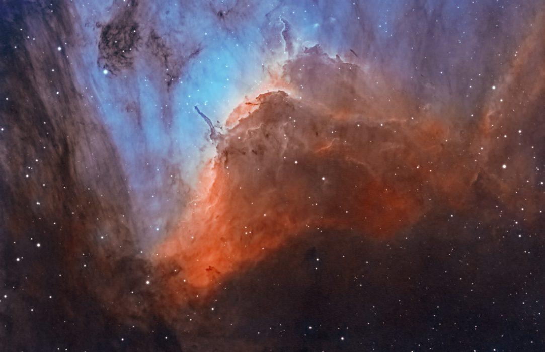 detalle-nebulosa-pelicano
