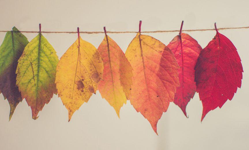 otoño-equinoccio