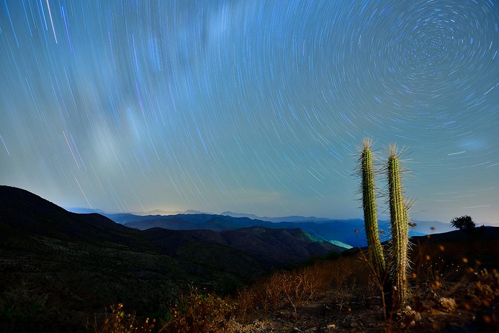 """Mención Honrosa: """"El Cosmos y sus estrellas, el Cáctus y su poesía"""" Autor: Christian Irarrázabal, La Serena. """"Un sector de la cordillera que se llama los Álamos"""". Región de Coquimbo, Chile."""