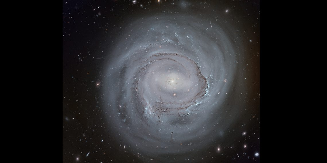 galaxia espiral NGC 4921