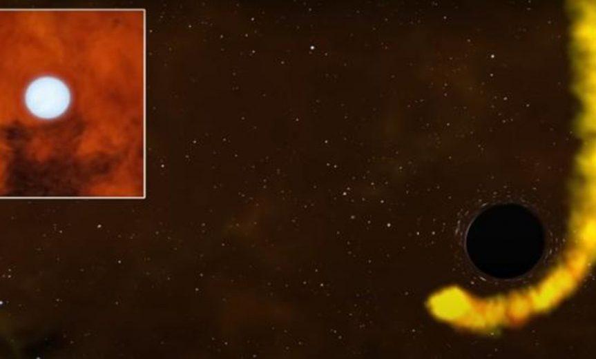 estrella que sobrevivio agujero negro
